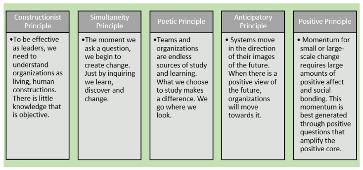 Appreciative Inquiry Principles